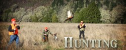 Hunting Opportunities